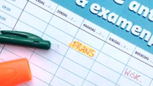 Voorbeeld van een ingevulde examenplanner