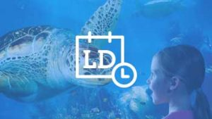 meisje ziet grote schildpad in aquarium