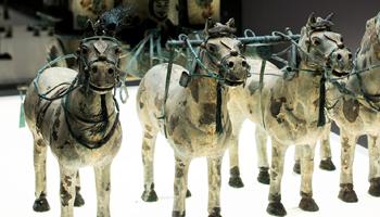 4 terracotta paarden met mondbuegels in koper